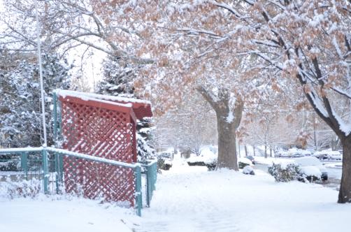 Snow in Sunday Morning
