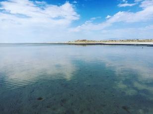 Antelope Island State Park, UT. 2016 summer