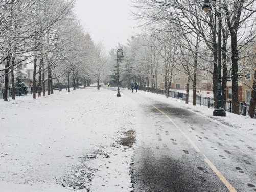 Cambridge-2017-winter